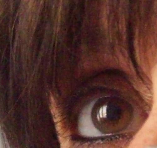 mon oeil fay.jpg