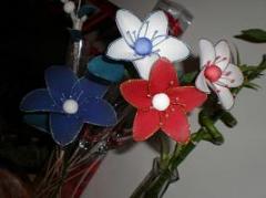 fleurs-en-collants-7-1774972.jpg