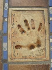 lynch (2).JPG