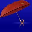 parapluie.jpg