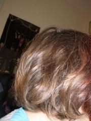cheveux.JPG