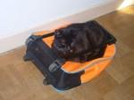 mimi valise.JPG